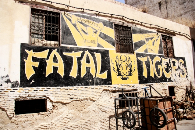 To Live in Fez - Fatal Tigers